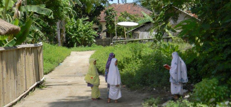 Kuta na Lombok, 2016