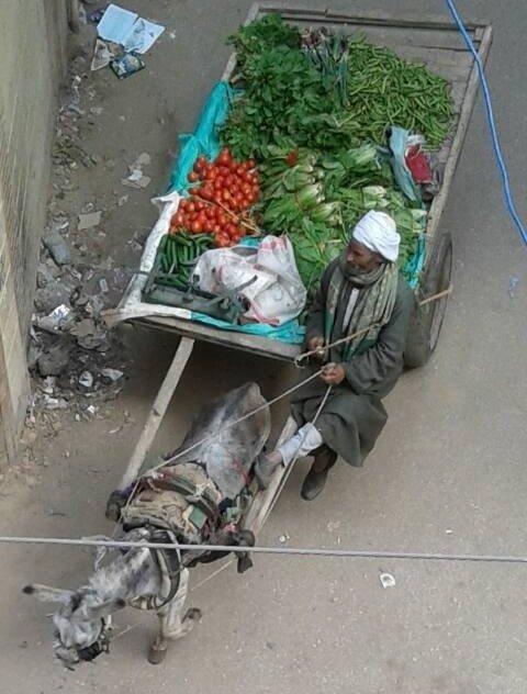 Uliczny sprzedawca świeżych warzyw