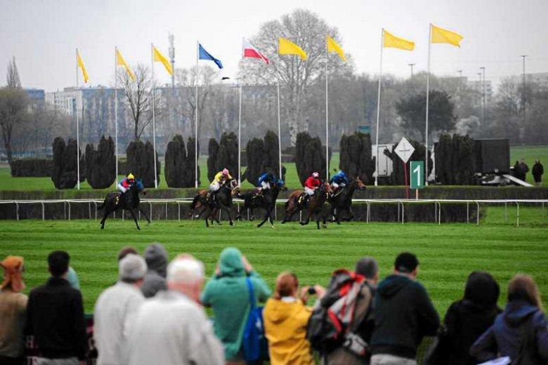 Otwarcie sezonu na torze wyścigów konnych na Służewcu. Gonitwy przyciągają coraz więcej fascynatów.