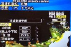 Japońskie media pokazują, które części  kraju są zagrożone.