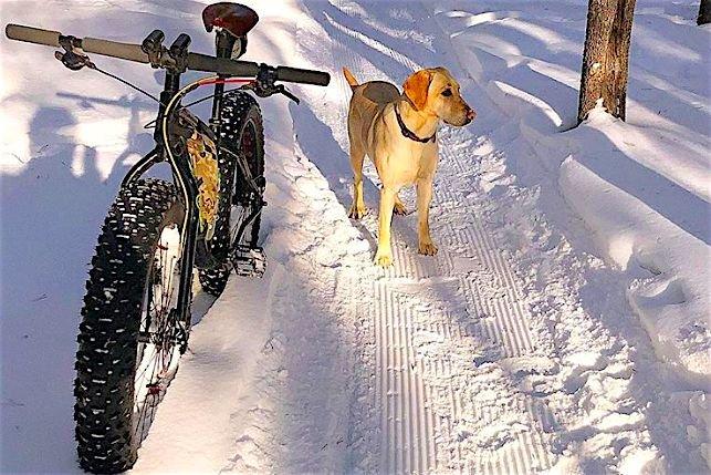 Oto iście zwierzęca pasja do zimowego pedałowania