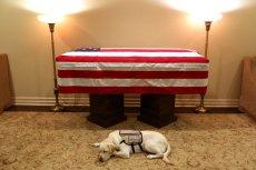 Pies Sully byłze zmarłym prezydentem do końca.