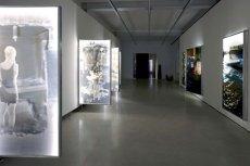 Wystawa Moniki Piórkowskiej odwołana przez Instytut Polski w Wiedniu.