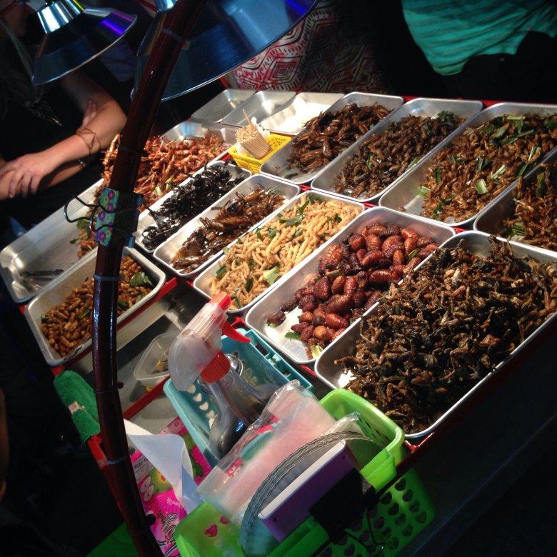 Stragan z pieczonymi robakami na Khao San. Bangkok/Tajlandia