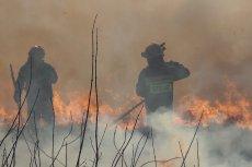 Czasem strażacy muszą gasić pożary swoich kolegów po fachu
