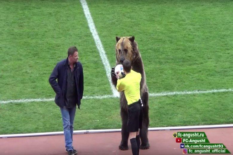 Mundial otworzy... niedźwiedź Tim!