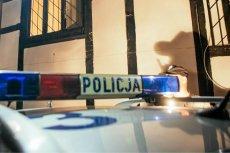 Policja złapała kierowcę, który wjechał w przystanek we Wrocławiu.