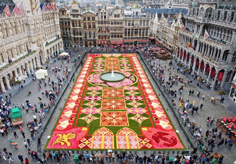 To Warto Zobaczyć Dywan Kwiatowy W Brukseli Natematpl