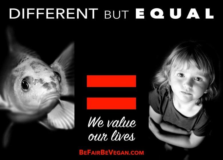 BE FAIR BEVEGAN - wegańska kampania billboardowa na Time Squere.  Inne, a jednak takie same.