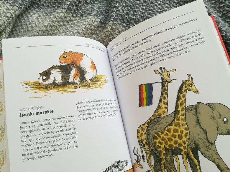 """""""Intymne życie zwierząt"""" Kathariny von der Gathen z ilustracjami Anke Kuhl"""