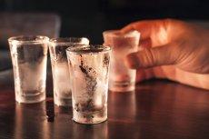 Pod Gostyniem człowiek zmarł podczas zawodów picia wódki.