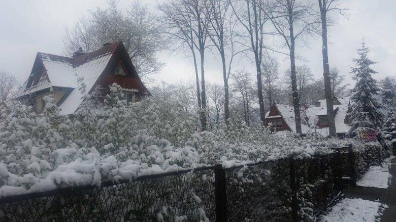 … i pod domem w Zakopanem