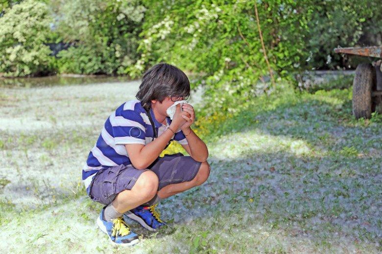 Łagodna zima może sprzyjać wzmożonemu pyleniu roślin, a unoszące się w powietrzu pyłki to zmora alergików. Z dokuczliwymi objawami alergii boryka się w Polsce aż 40 proc. osób